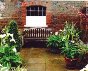 Растения - главный элемент участка