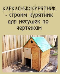 поэтапное строительство курятника для несушек