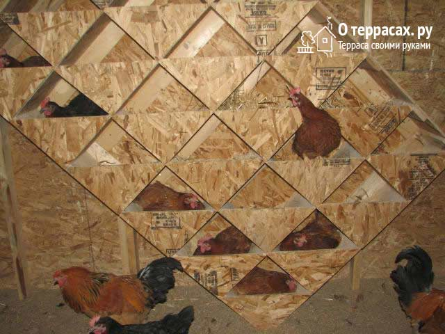 геометрические гнезда для курятника