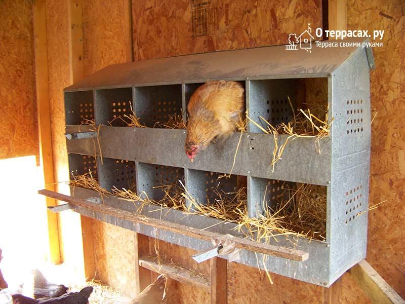 гнезда для курятника - делаем из металлолома
