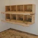 пример гнездовья в курятнике 1